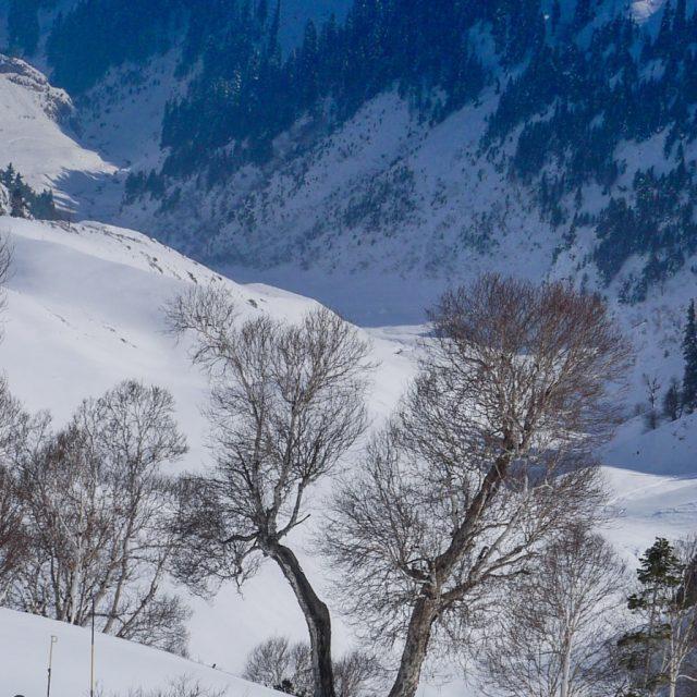 India 2023: Ski Gulmarg